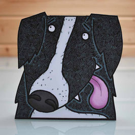 Pop-Up 3D Border Collie Sheepdog Creature Greeting Card