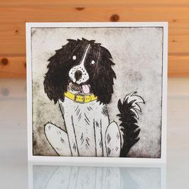 'Spaniel' Dog Blank Inside Greeting Card