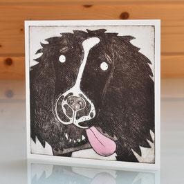 'Fetch' Springer Spaniel Blank Inside Greeting Card