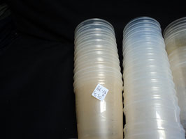 AL-166 10 Avent Einfrierbecher-Aufbewahrungsbecher mit Deckel  220 ml