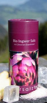 Bio Ingwer Salz