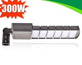 Уличный светодиодный светильник LS 300W-BBier