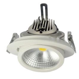 поворотный LED светильник LS-20W-P