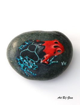 Rock-Art hand beschilderde riviersteen, Rode Gifkikker