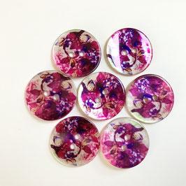 Perlmuttknopf Pink-Violett