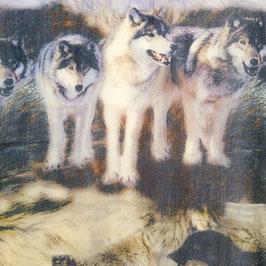 Schal Feinwolle Wölfe