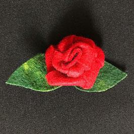 Rote Filzrose