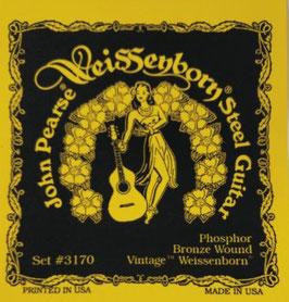 John Pearse Resophonic Guitar Phosphor Bronze Light Custom Weissenborn, .015 - .056 3170 (BEJS)