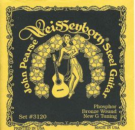 John Pearse Hawaiian Lap Steel Guitar G Tuning 015-058 3120L