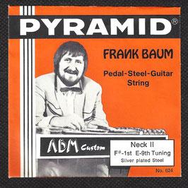 Pyramid Pedal Steel Gitarre Saiten ( Art.Nr.471/10)