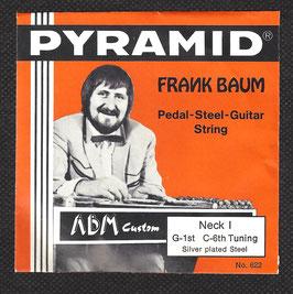 Pyramid Pedal Steel Gitarre Saiten ( Art.Nr.470/10)