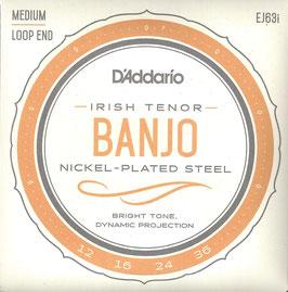 D'Addario Tenor Banjo-Irish 4 Strings ( EJ63i)