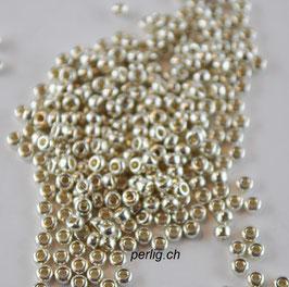 Galvanized Silver 1051