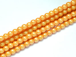 Pearl Shell Apricot