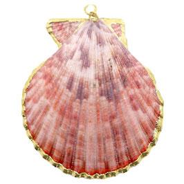 Muschel Anhänger Vintage Pink Gold