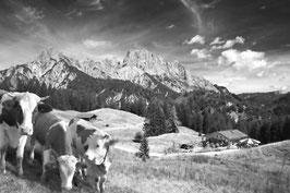 Reither Gebirge