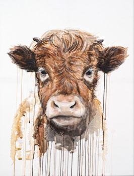 Baby Cow HIGH QUALITY ART PRINT
