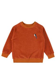 NEU: Velours-Sweatshirt in Rostbraun von Lily Balou