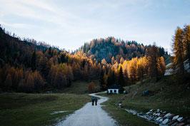 PRINT - Alpen im Herbst