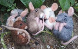 Schlafende Maus