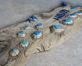 Tableau de curiosités - Couleur lagon à Meneham
