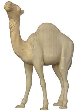 Kamel zu Krippenfiguren natur belassen