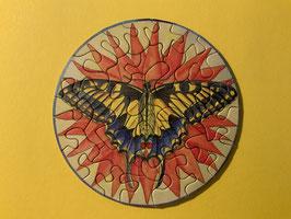 """Picoli """"Schmetterling"""""""