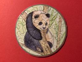 Picoli Pandabärchen