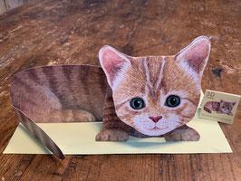 """3 D Karte """"Kätzchen"""""""