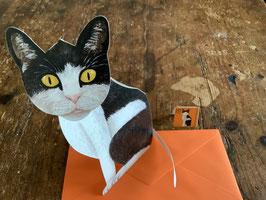 """3 D Karte """" Katze"""""""