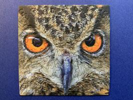 Puzzle Eule Animals Q4-4