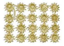 Edelweiss 20er Set