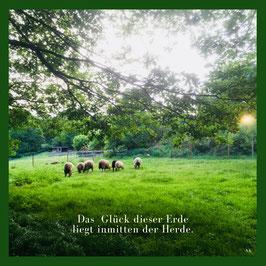 Kunstdruck 1  - Poster - Das Glück dieser Erde liegt inmitten der Herde