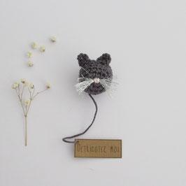 Boîte Surprise Chat Anthracite aux Moustaches Argentées