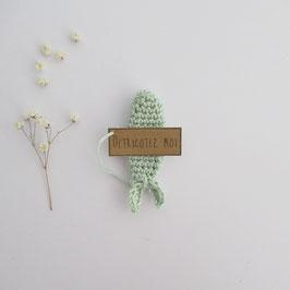 Boîte Surprise Poisson Vert Pâle