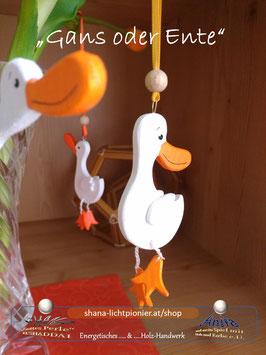 Gans oder Ente - 4er-Set