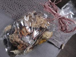 1 Beutel getrocknete Blüten, Kiefernzapfen, Schneckenhaus, Baumpilzen u.a. Naturmaterialien