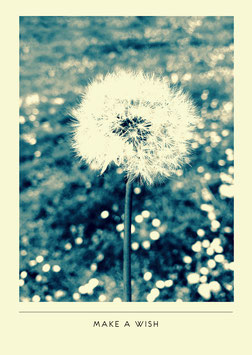 Make a wish | Postkarte