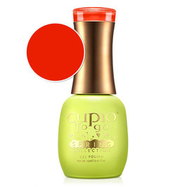 SPRING COLLECTION - Poppy