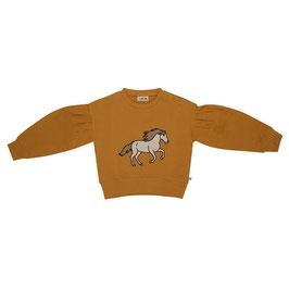 Wild Horse girls sweater