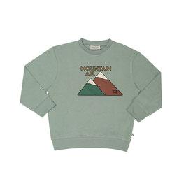 Mountain Air  sweater wt print