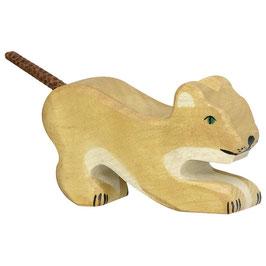 Löwe klein spielen