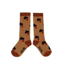 Knee socks acorn