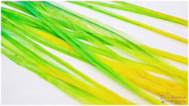 Multicolor Grün-Gelb small + Big