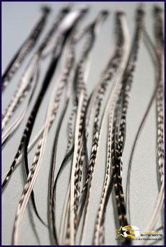 5er Single Schwarz&Weiß lang ca. 25-30cm & extra lang ca. 30-35cm