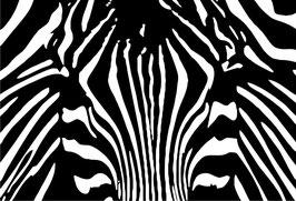 Camuflaje Cebra