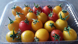 CHERRY TOMATOES fresh from PERMACULTURE FARM - 100% ORGANIC and NATURAL