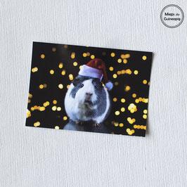 Christmas piggy cards (5 cards)
