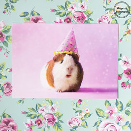 Party Pig Archie (1 card)