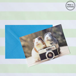 Photographer Piggies single card (1 card)